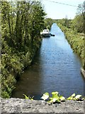 G9509 : Drumleague Lock - Lough Allen Canal by Suse