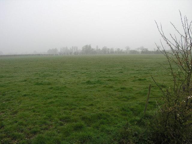 Footpath and Fog