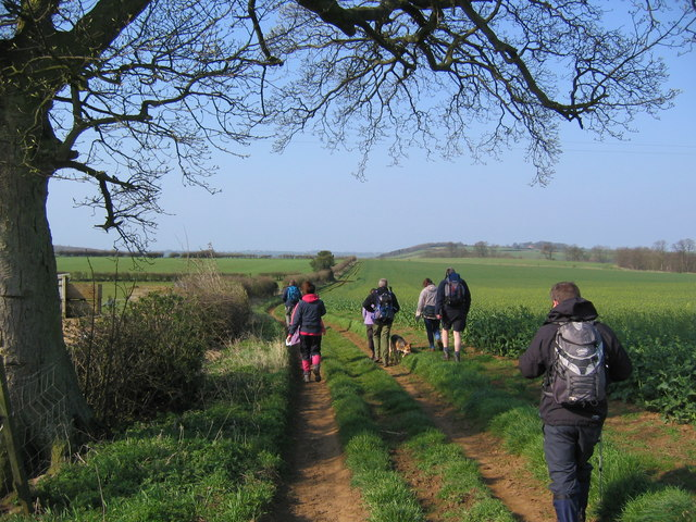 Track Near Brandrith Farm