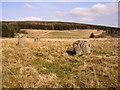 NT9720 : Threestone Burn stone circle by Kenneth   Ross