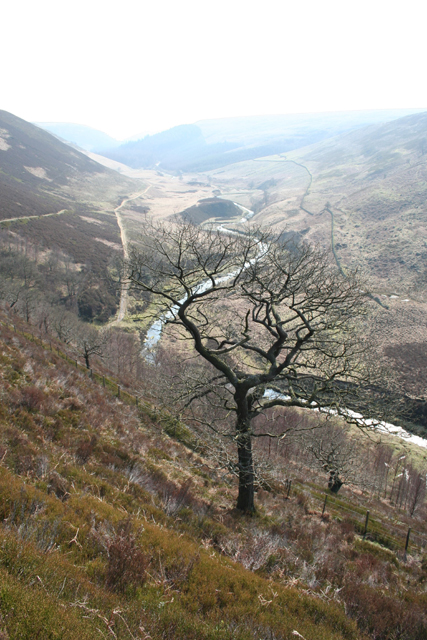 Upper Derwent Valley from Oaken Bank