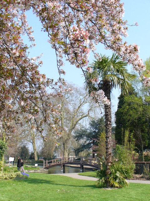 Spring in Stoke Park Gardens