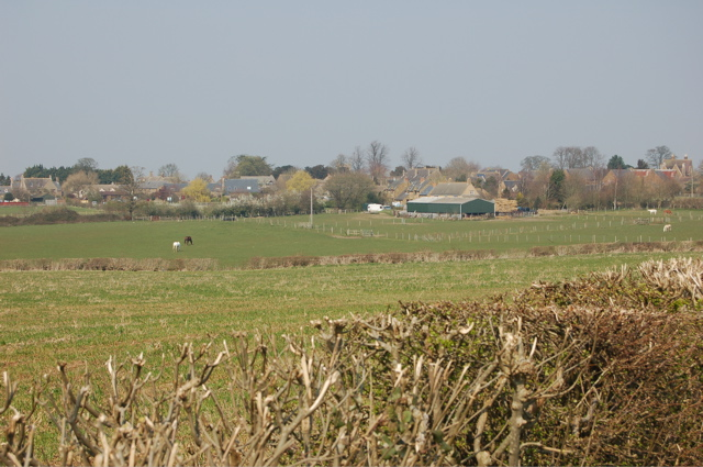 Field south of Duns Tew