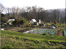 SE1039 : Allotments off Beck Lane, Bingley by Humphrey Bolton