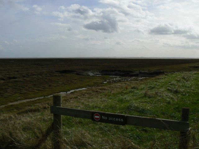 Saltmarsh at Freiston Shore