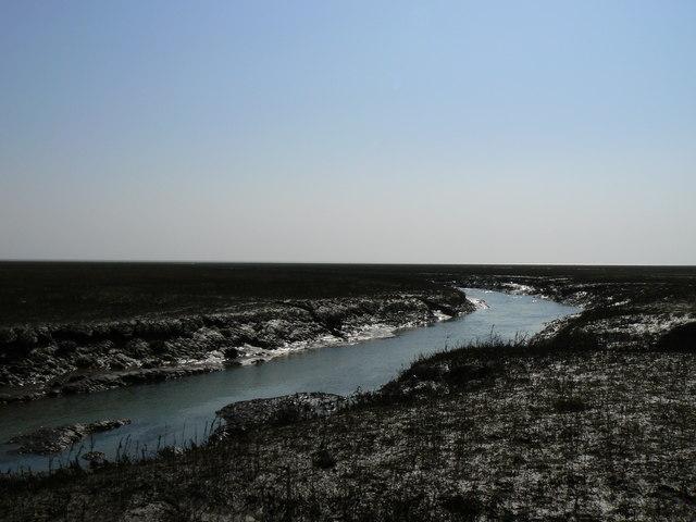Saltmarsh creek, north of Freiston Shore