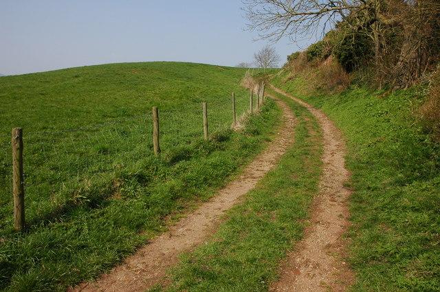 Track below Welland Court