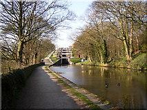 SE1039 : Approaching the five-rise locks, Bingley by Humphrey Bolton