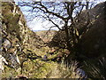 NT9611 : Pigdon's Leap at Pigdons Sike by Kenneth   Ross