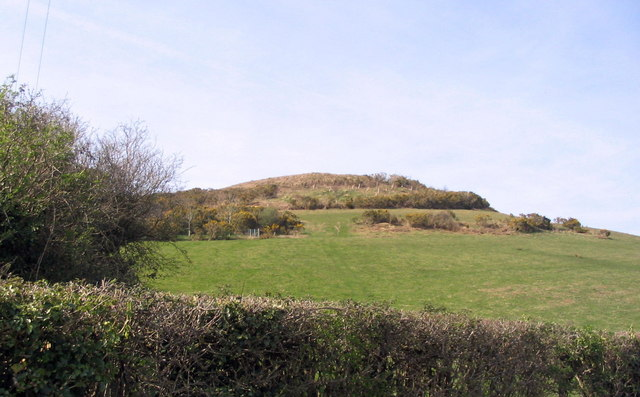 Hardown Hill from the road to Ryall