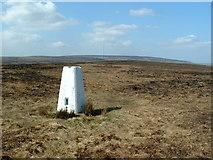 SE1303 : Snailsden Edge Trig Point by Nigel Homer