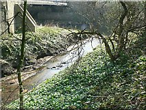 SE2436 : Cow Beck joining the River Aire by Rich Tea