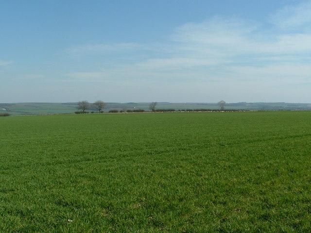Fields east of Refuge Farm