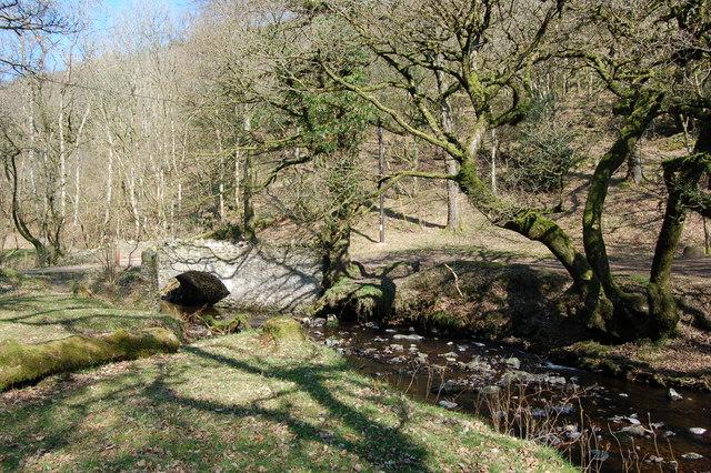 Pool Bridge -in early  April