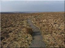 SD9834 : The Pennine Way by Steve Partridge