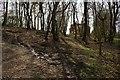 TQ6227 : House on the edge of Batts Wood by Nikki Mahadevan