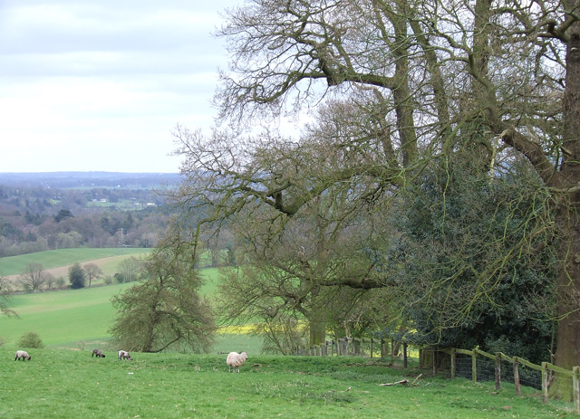 Grazing Land, near Compton, Staffordshire