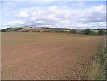 NT6226 : Farmland by Walter Baxter