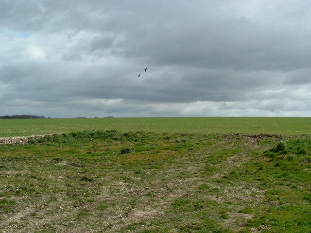 Arable fields above Boythorpe