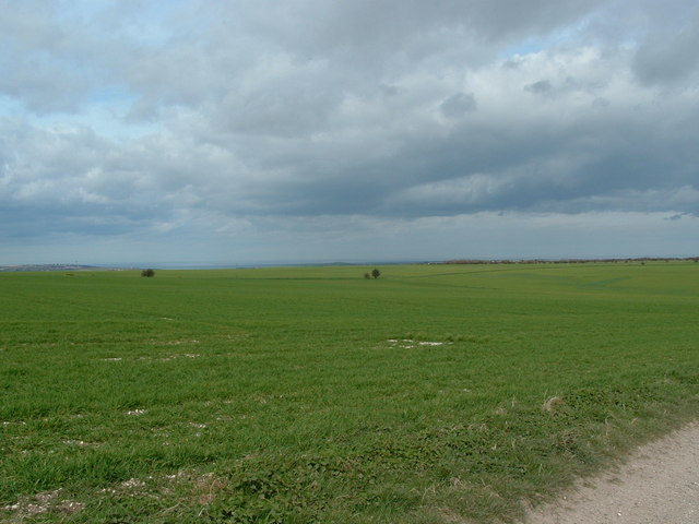Arable land, Folkton Wold Farm.