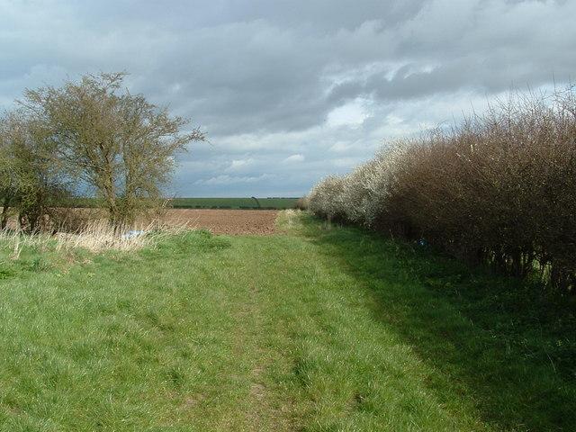 Hill Farm, Burton Fleming