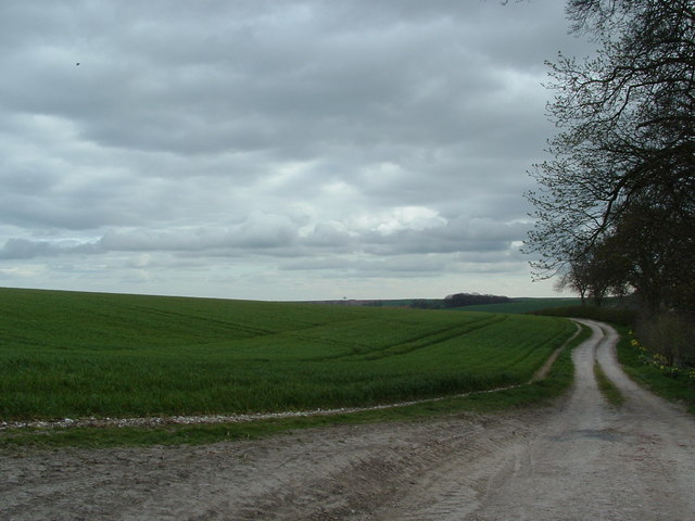 Arable land and farm track, Swaythorpe Farm