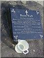 C1119 : Doon Well by Chris Gunns