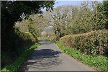 SZ5392 : Brocks Copse Road, Wootton by Stephen McKay
