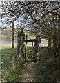 TQ6327 : Footpath entrance on the edge of  Batts Wood by Nikki Mahadevan