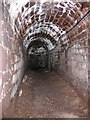 SX9292 : Exeter's underground tunnels by M Etherington