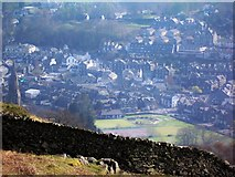 NY3704 : Ambleside from Tod Crag by Derek Charlton