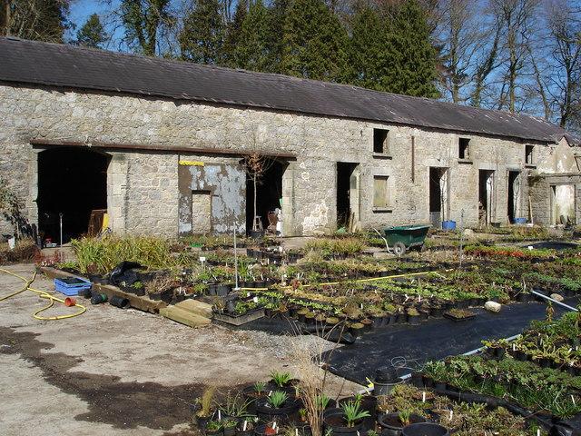 June Blake's Nursery