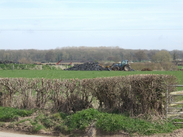 Opening up the silage clamp
