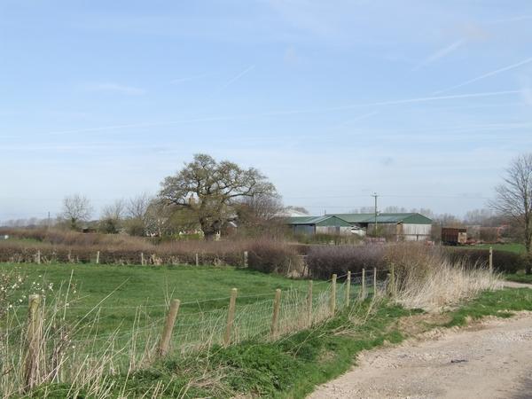 Eaton Brook Farm