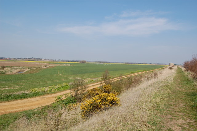 Field near Bawdsey