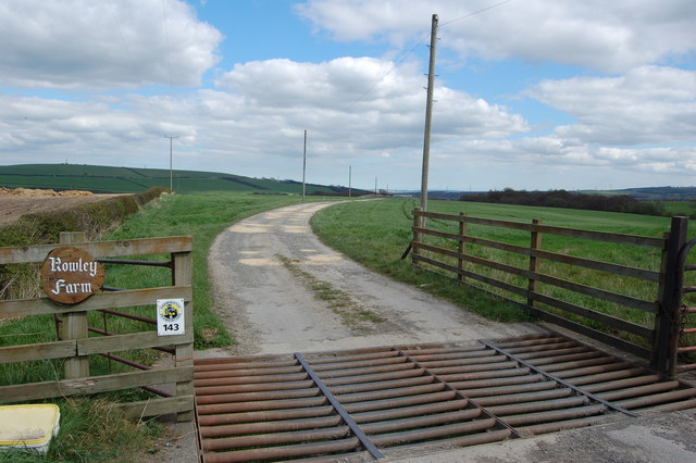 Cattle Grid Rowley Farm