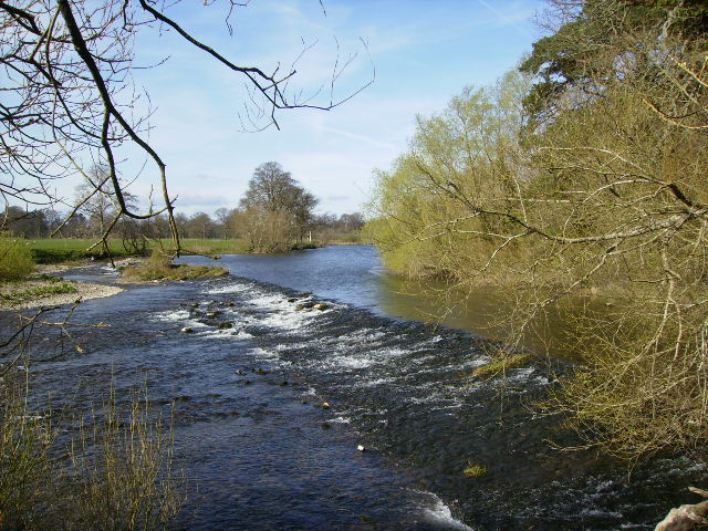 Weir on the River Teviot east of Monteviot House