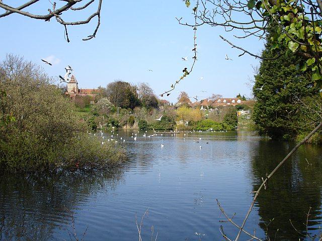 Stonebridge Pond