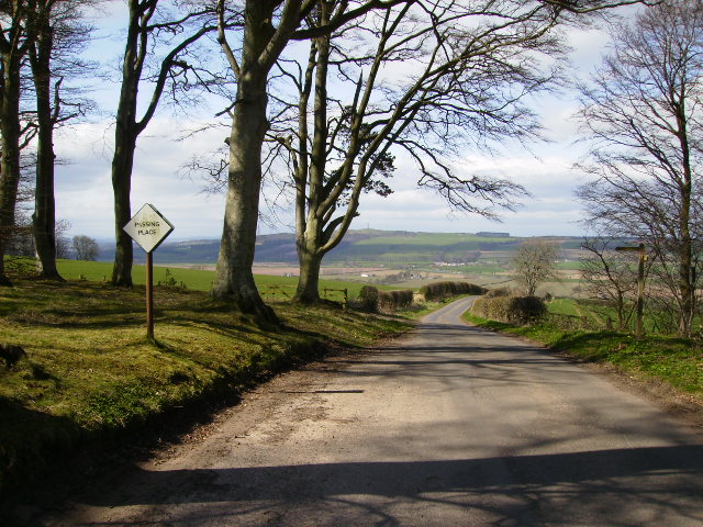 St.Cuthbert's Way joins country lane near Crailing