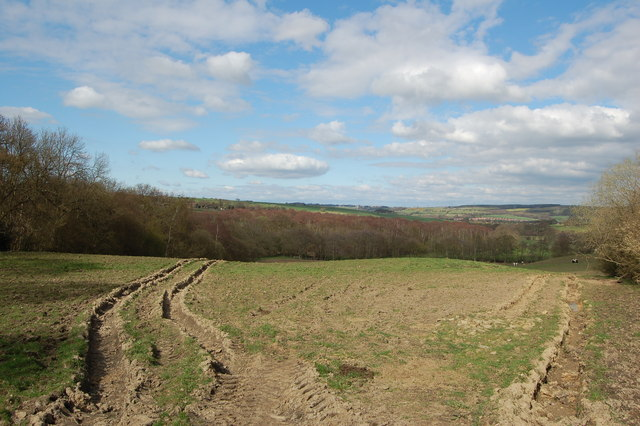 Muddy field above River Browney