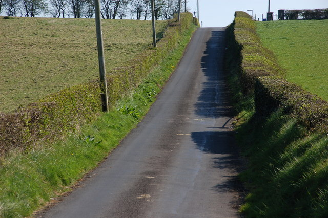 The Bankhall Road near Magheramorne (1)