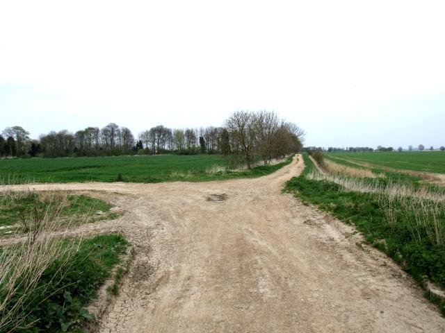 Track near White House Farm, March