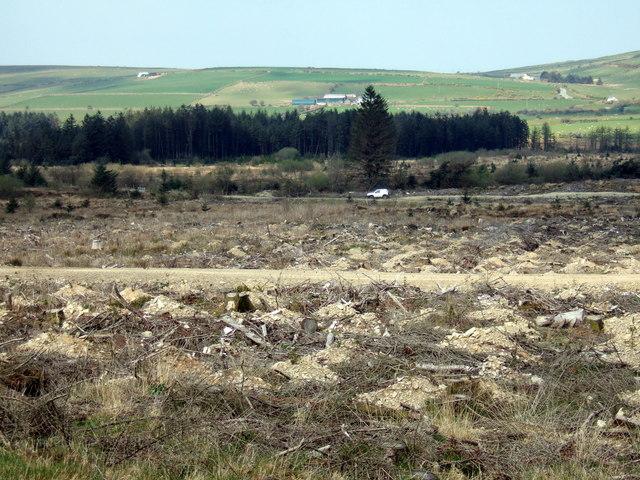 De-afforestation