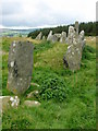 C2500 : Beltany stone circle by Chris Gunns
