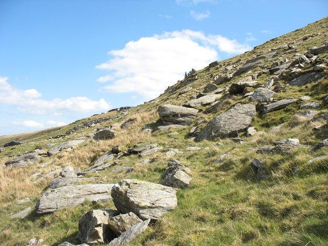 A boulder field