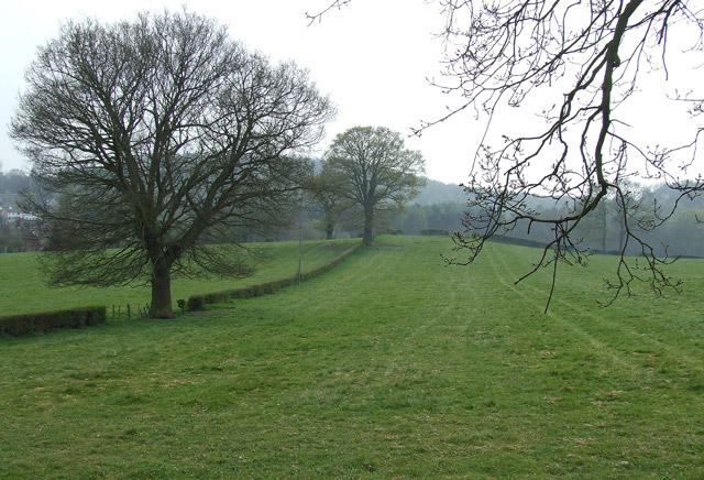Grazing Land, Kinver, Staffordshire