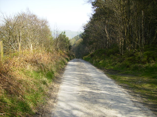 Steep hill on the white road from Wrench Green to Wykeham Forest