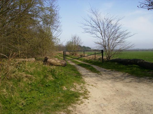 Track running along Moor Dike