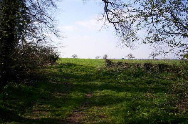 Fields near Anslow