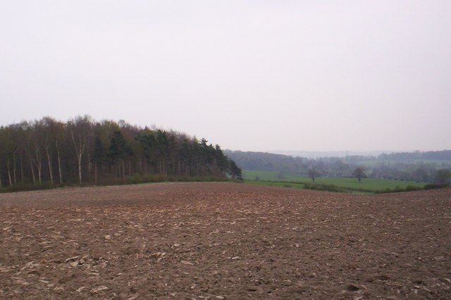 Ploughed field near Bannister's Hollies